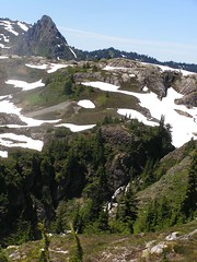 Yellow Aster Butte 079