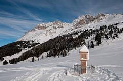 Am Passo Pampeago (2000 m)