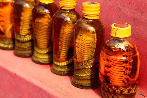 Snake oil, Sapa