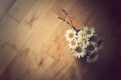 small bouquet photo by MarianneLoMonaco