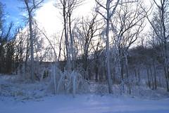 December 13, 2010 Holy SNOW!!! 075