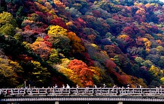 Togetsu-kyo:嵐山・渡月橋 photo by love_child_kyoto
