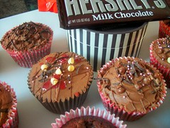 hershey's chocolate cupcakes photo by bendy cocoa
