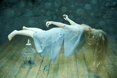 Somewhere in a dream photo by stumayhew