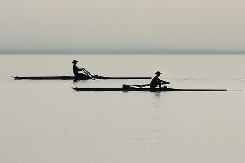 Aviron sur le lac léman