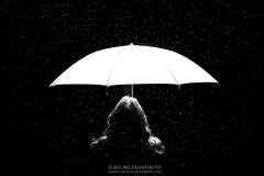 Shining stars / In the rain (EXPLORE #48) photo by Ilko Allexandroff / イルコ・光の魔術師