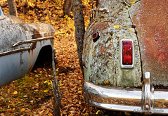 Fall at the Boneyard photo by / shadows and light