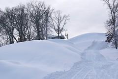 December 13, 2010 Holy SNOW!!! 099