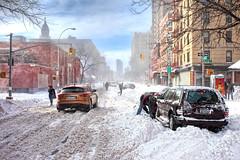 'Snow Day!', United States, New York, New York City, Snow Day photo by WanderingtheWorld (www.ChrisFord.com)
