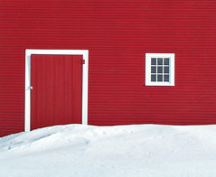 Winter Red photo by forester.jake