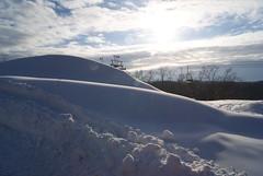 December 13, 2010 Holy SNOW!!! 017