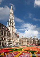 Flowers Carpet of Brussels - Grand-Place - Belgium photo by Frank Smout