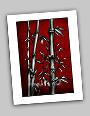 Print: Red Bamboo photo by shaire productions