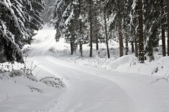 Winding Winter Ways photo by diesmali