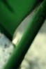 5393561935_d8c89992e2_t