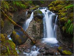 mountain stream photo by footsore311