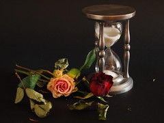 Time - Tempo photo by SissiPrincess