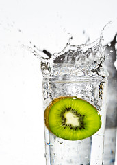 Kiwi splash 4 photo by HERNANTIPA