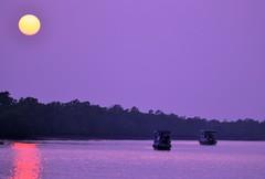 Sundarbans @ Sunset photo by pallab seth