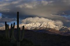 Fresh snow on the Four Peaks photo by Mike Olbinski Photography