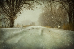Winter's Road photo by StoryWorks - Suzette.desertskyblue