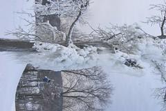 December 13, 2010 Holy SNOW!!! 098
