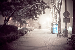 Ghosts in the Snow [Explored] photo by stuckinseoul