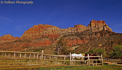 Zion National Park, Utah, USA 9 photo by PULLKATT, SEE MY NEW BLUE EXPO