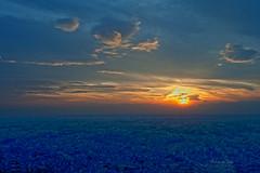 Sunset From Minato-Mirai photo by Mr. FRANTaStiK