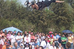flying with crowd