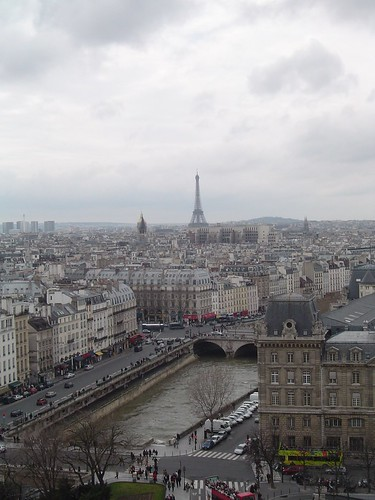 View of Paris from Notre Dame