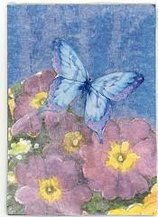 Butterfly Blue - ATC