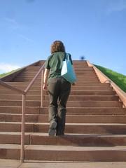 Stephanie climbing Monk's Mound