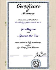 xample_certificate