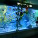 Ikebukuro - Sunshine City Aquarium