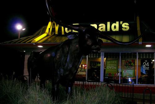 McDonald's Bull