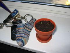 Tiny Sock with Tiny Daisy