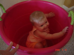 Reese in bucket