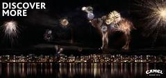 Camel-Discover-More-Fireworks