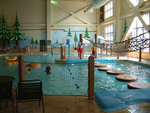lilypads pool