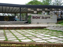 boh - sg palas03 tea centre