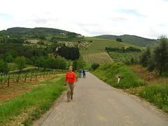 Walking to Montefiridolfi