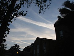 Contrails, lets make artificial rain?