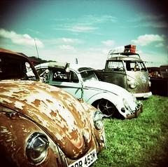 rusty bug photo by FatMandy