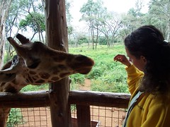 Katie and Giraffe at Giraffe Center, in Nairobi, Kenya