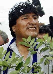 Evo Morales, candidato presidencial del Movimiento al Socialismo (MAS), llevó una hoja de coca mientras se dirigía con sus simpatizantes a una casilla de votación, en La Paz