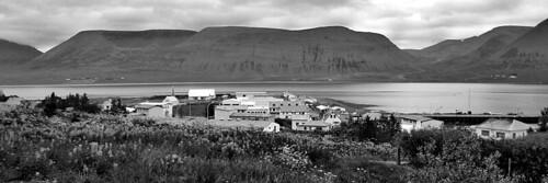 Þingeyri and Dýrafjörður in Black and White