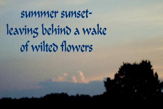 summersunset