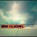 Bees, Honey