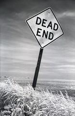 Dead End photo by tjdewey